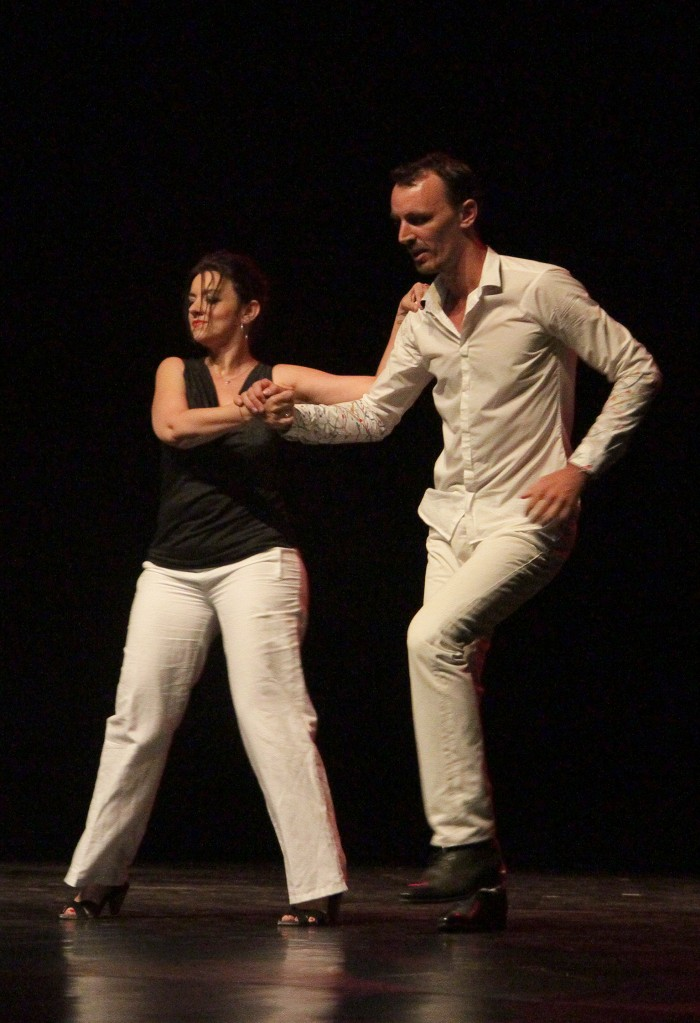 Spectacle 2015 ARTDANSES